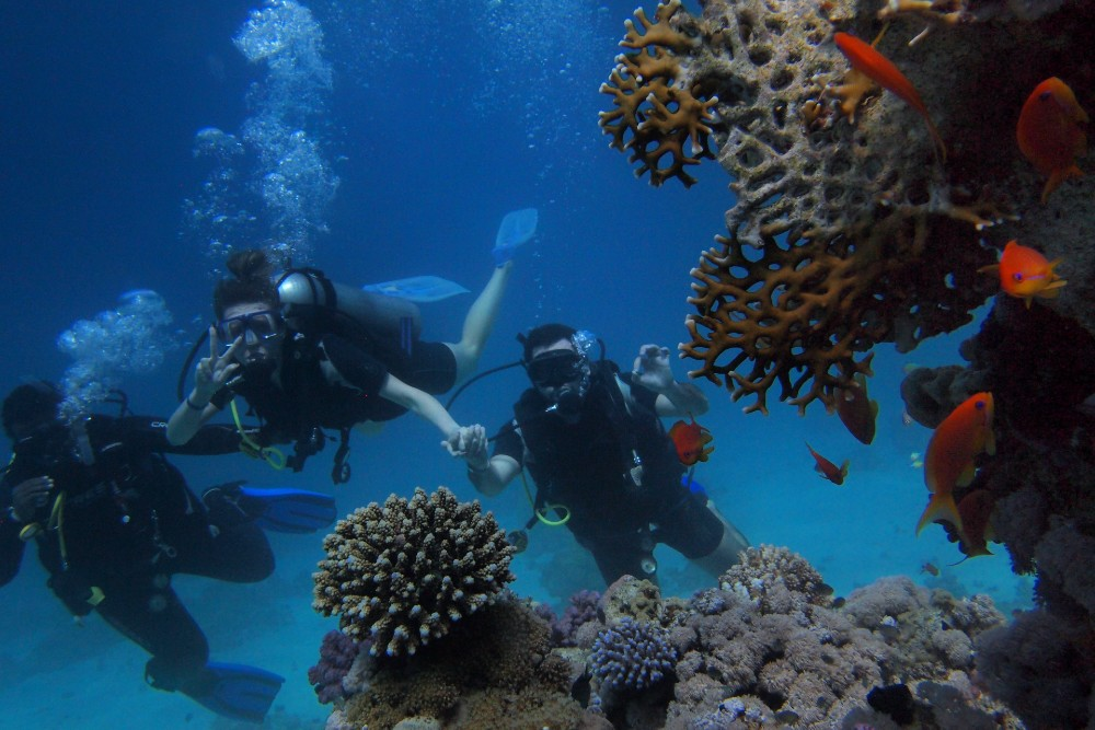 Egyptian Red Sea best places to learn scuba diving