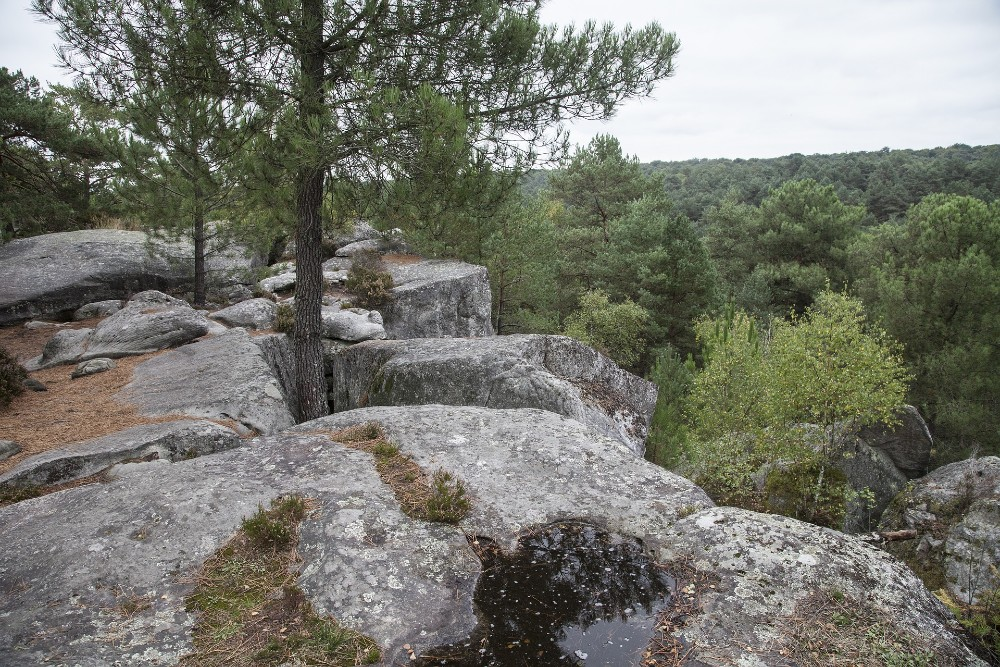 Fontainebleau best rock climbing place in the world