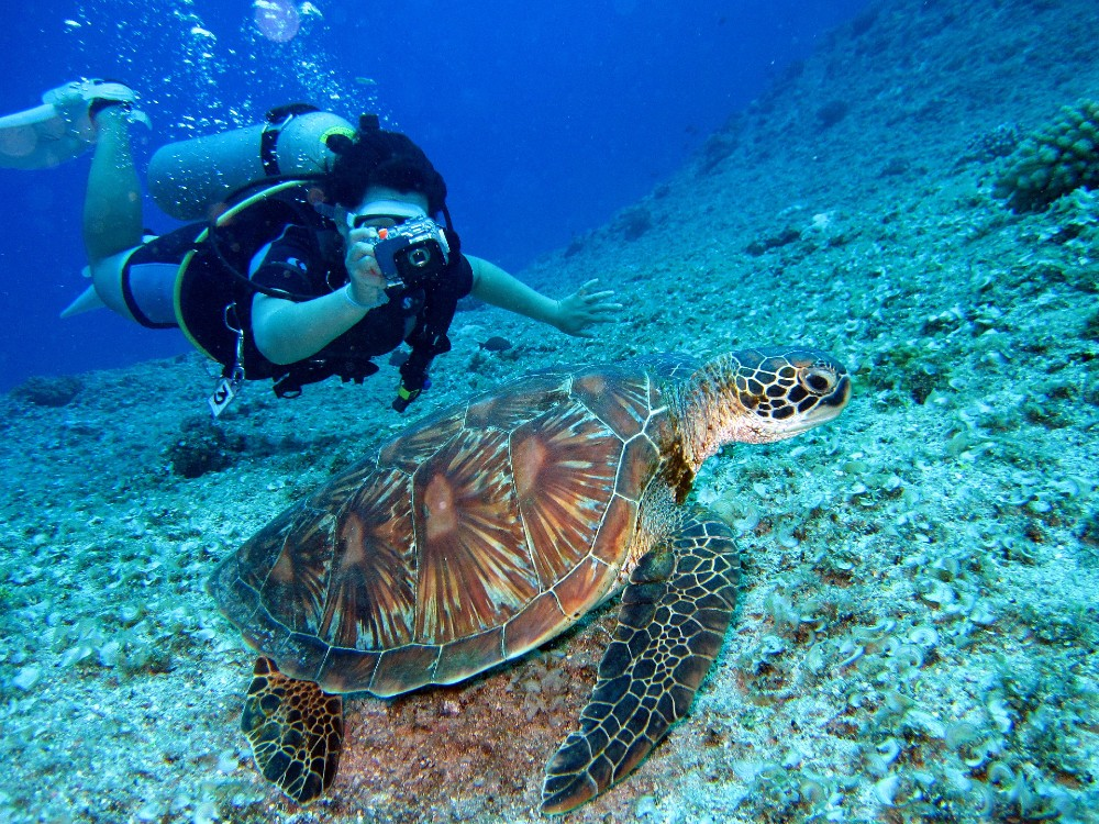 Gili Islands best places to learn scuba diving