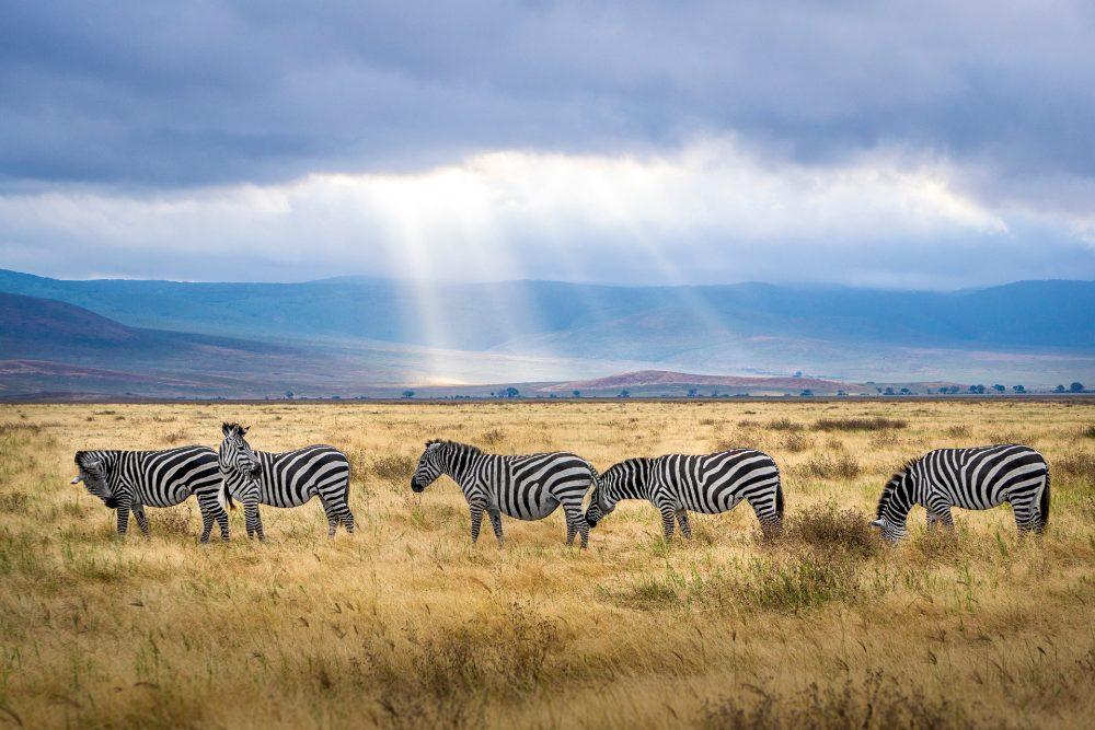 kenya top places to visit in 2021