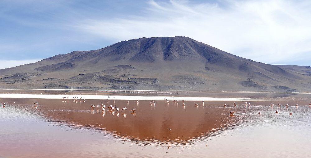 Laguna Colorada in Bolivia top 10 lakes in the world